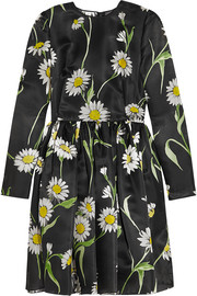 Dolce & Gabbana Daisy-print silk-organza mini dress