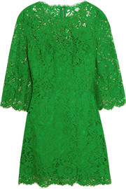 Dolce & Gabbana Floral-lace mini dress