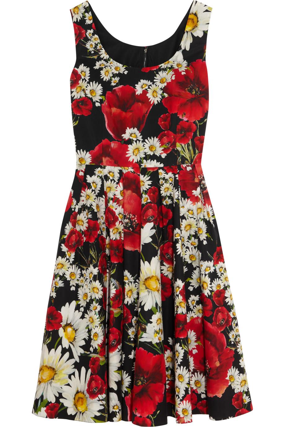 Dolce & Gabbana Floral-Print Cotton-Poplin Dress, Red/Black, Women's - Printed, Size: 36