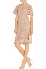 Valentino Cotton-blend lace dress