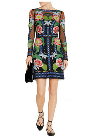 Carmelina embroidered tulle mini dress