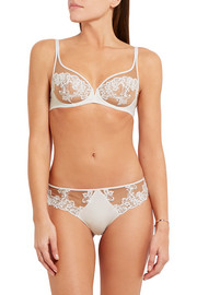 Saga tulle, guipure lace and stretch-satin briefs