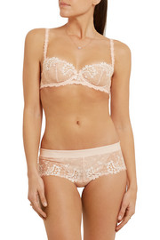 Wish guipure lace and stretch-tulle briefs