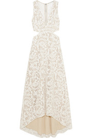 Juelia cutout embroidered tulle dress