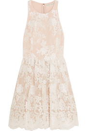 Ladonna silk-embroidered tulle mini dress