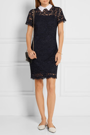 MICHAEL Michael Kors Stretch-cotton poplin-trimmed corded lace dress