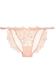 Camilla satin-trimmed embroidered tulle briefs