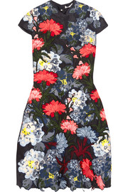 Erdem Hetty embroidered silk-organza mini dress