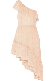 Pamela one-shoulder fil coupé silk-blend georgette dress