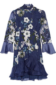 Erdem Constance embroidered silk-organza dress