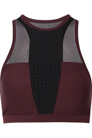 Mesh-paneled perforated stretch sports bra