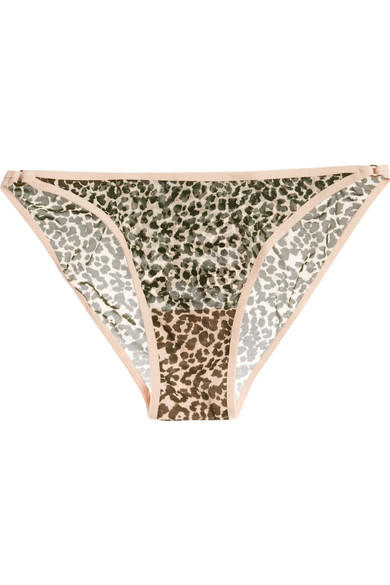 Love Stories - Shelby Leopard-print Stretch-tulle Briefs - Leopard print
