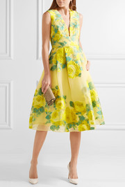 Pleated floral fil coupé organza dress