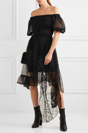 Nokomis off-the-shoulder embroidered chiffon and lace dress