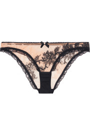 Luciela lace-trimmed embroidered stretch-tulle briefs
