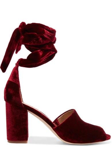 b723bf1ffdac23 Sam Edelman. Odele velvet sandals