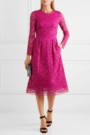 Corded cotton-blend lace midi dress