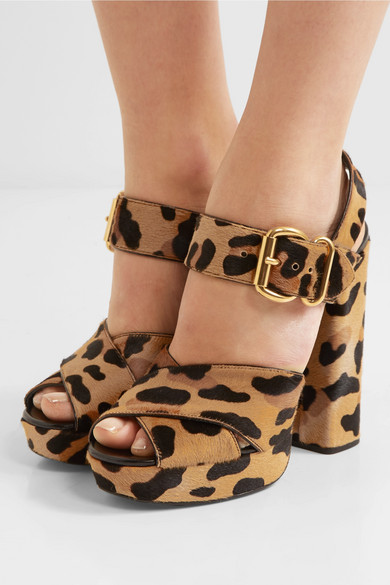 Prada Plateausandalen aus Kalbshaar mit Leopardenprint Größte Anbieter Echte Online Steckdose Mit Kreditkarte Outlet Kaufen Zu Verkaufen Sehr Billig aJxyL