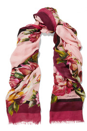 Dolce & Gabbana Floral-print modal and cashmere-blend gauze scarf