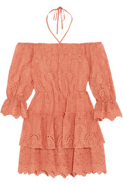 Alice + Olivia Waylon broderie anglaise chiffon mini dress