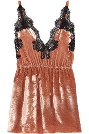 Rosamosario Coprimi d'Amore lace-trimmed silk-velvet camisole