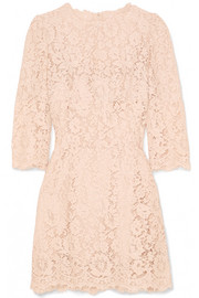 Dolce & Gabbana Crystal-embellished corded lace mini dress