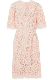 Dolce & Gabbana Corded lace midi dress