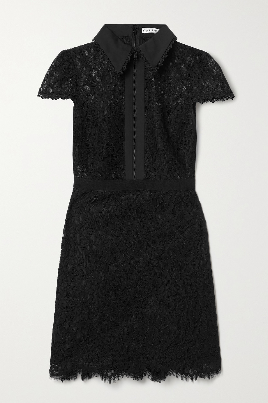 ALICE + OLIVIA Ellis cotton-poplin and grosgrain-trimmed corded lace mini dress